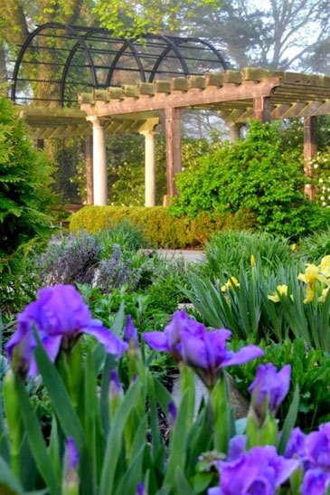 Ault Park Gardens