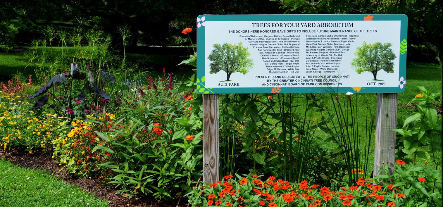 Ault Park Tree Arboretum